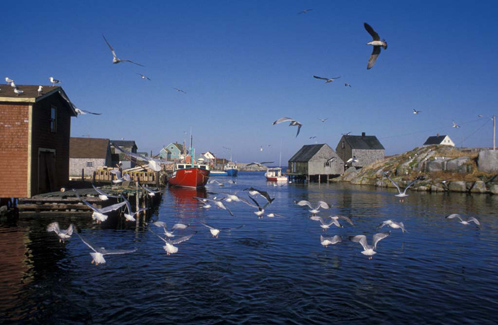 fishing_village_of_peggy_s_cove.jpg
