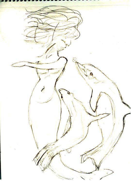 dolphins-004.jpg